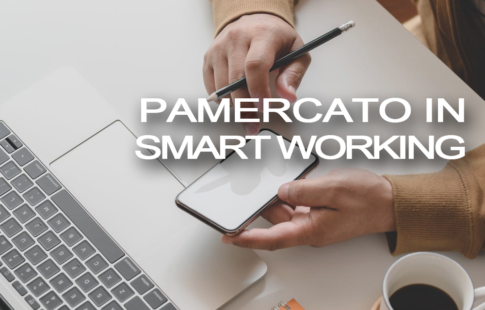 PAMERCATO IN SMART WORKING