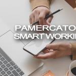 PAMERCATO IN SMART WORKING